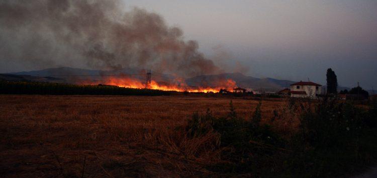 Έσβησε η φωτιά πίσω από το γήπεδο της Ιτιάς