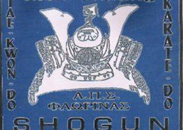Εγγραφές και καλοκαιρινά μαθήματα στον Shogun
