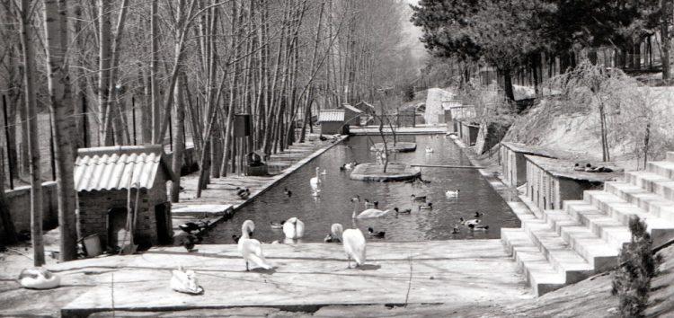 Ο Ζωολογικός Κήπος Φλώρινας και η ίδρυσή του το 1967