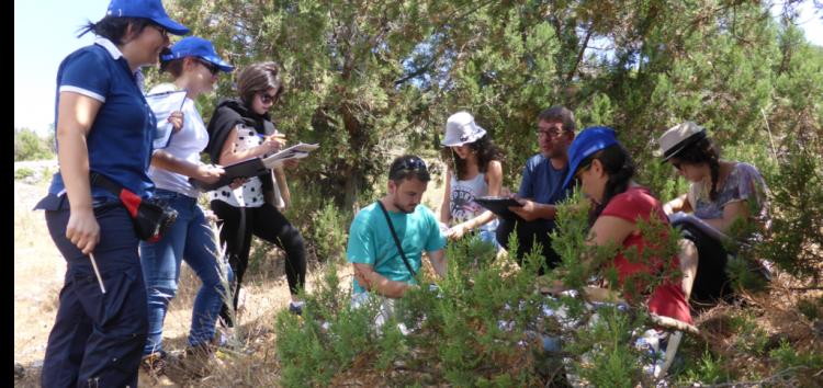 Τα Ελληνικά Δάση Αρκεύθου μονοπώλησαν το ενδιαφέρον το καλοκαίρι στην Πρέσπα
