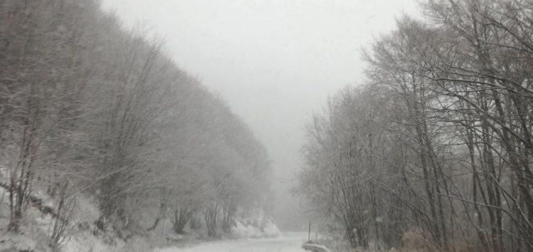 Στα λευκά ντύθηκαν τα ορεινά της Φλώρινας (pics)