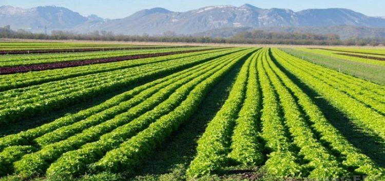 Ημερίδα σχετικά με αγροπεριβαλλοντικά μέτρα στον δήμο Πρεσπών