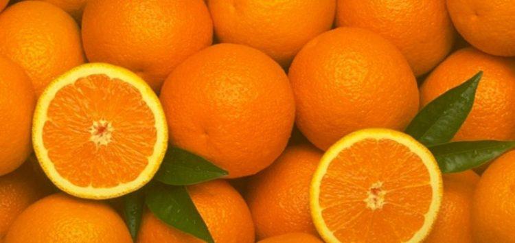 Δωρεάν διανομή πορτοκαλιών από το δήμο Φλώρινας