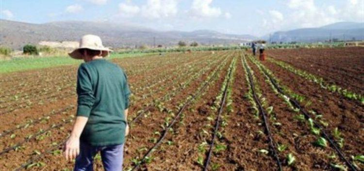 Παράταση της υποβολής αιτήσεων στήριξης στο πρόγραμμα των νέων γεωργών