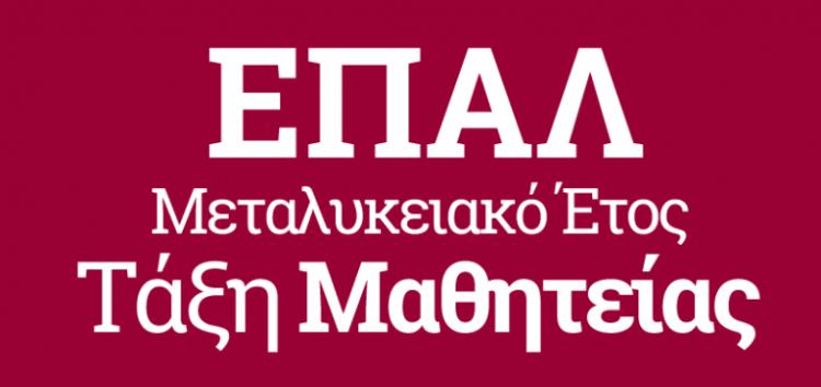 Μεταλυκειακό Έτος – Τάξη Μαθητείας στα ΕΠΑΛ Φλώρινας και Αμυνταίου