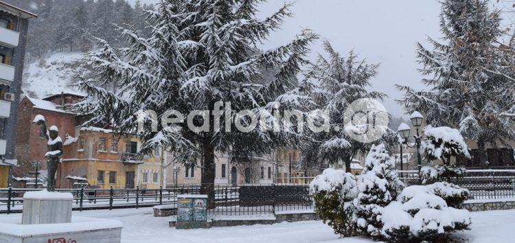 Νέα χιονόπτωση και -22 βαθμοί Κελσίου στη Φλώρινα!