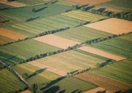 Ενημέρωση από την Επιτροπή Αναδασμού αγροκτήματος Αμμοχωρίου