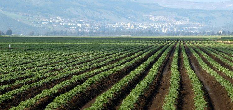 Υποβολή αιτήσεων στήριξης για βιολογικές καλλιέργειες
