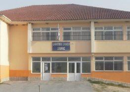 Αποκριάτικο πάρτυ στο δημοτικό σχολείο και νηπιαγωγείο Σιταριάς