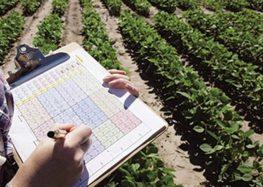 Υποβολή δηλώσεων καλλιέργειας στον Αγροτικό Συνεταιρισμό Ευρύτερης Περιοχής Αμυνταίου