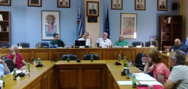 Διαβούλευση του Σχεδίου Ολοκληρωμένης Χωρικής Επένδυσης αξιοποίησης των λιμνών της περιοχής Αμυνταίου (pics)