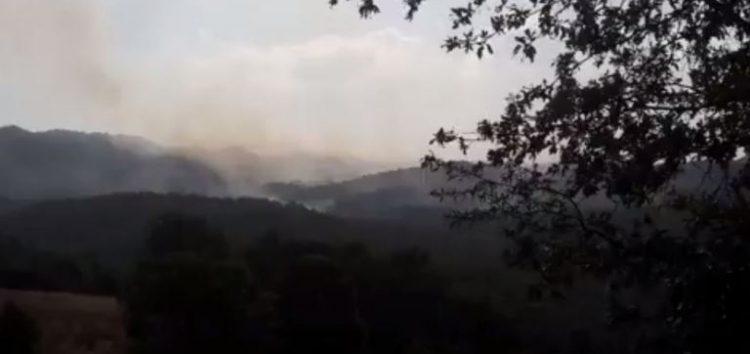 Σε ύφεση η πυρκαγιά που ξέσπασε στο Βροντερό (video)