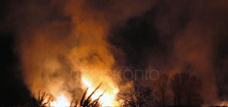 «Εντυπωσίασαν» αυτή τη φορά οι πυρομανείς στο Αμύνταιο (pics)