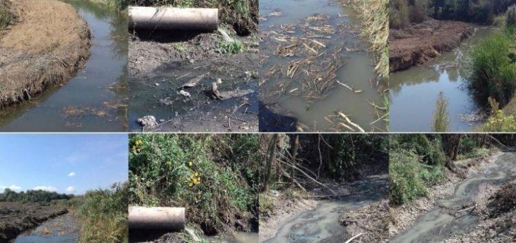 Να τιμωρηθούν όλοι όσοι ενέχονται στο σκάνδαλο της μόλυνσης της Βεγορίτιδας (pics)