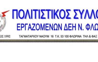 Γενική συνέλευση του Πολιτιστικού Συλλόγου Εργαζομένων Δ.Ε.Η Ν. Φλώρινας