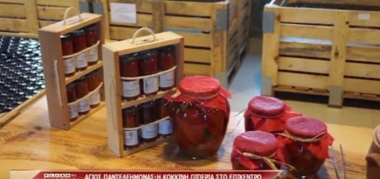 Έρευνα του Flash για την καλλιέργεια πιπεριάς στη Φλώρινα (video)