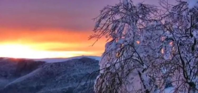 Στα βουνά της Φλώρινας (video)