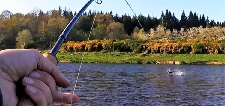 Απαγόρευση αλιείας σε λίμνες, φράγματα, λιμνοδεξαμενές και ποταμούς της Φλώρινας