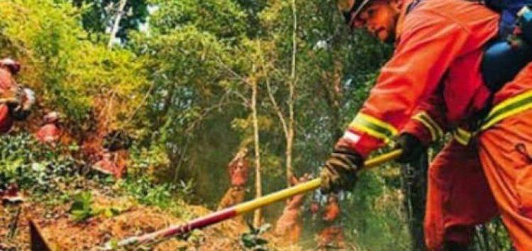 ΟΑΕΔ: Τα αποτελέσματα κοινωφελούς εργασίας στην πυροπροστασία
