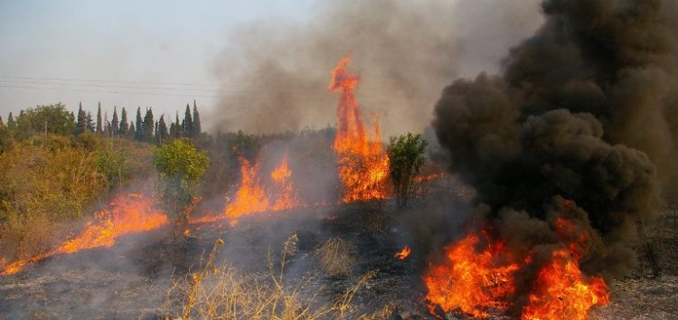 Πυρκαγιά σε δασική περιοχή στο Βροντερό