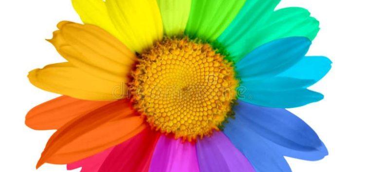Το λουλούδι (της κόρης)