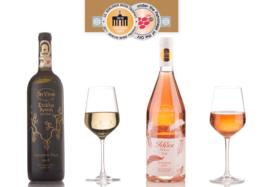 Με δύο χρυσά μετάλλια επέστρεψε από το 22ο Berlin Wine Trophy η οινοποιία «In Vino Estate»