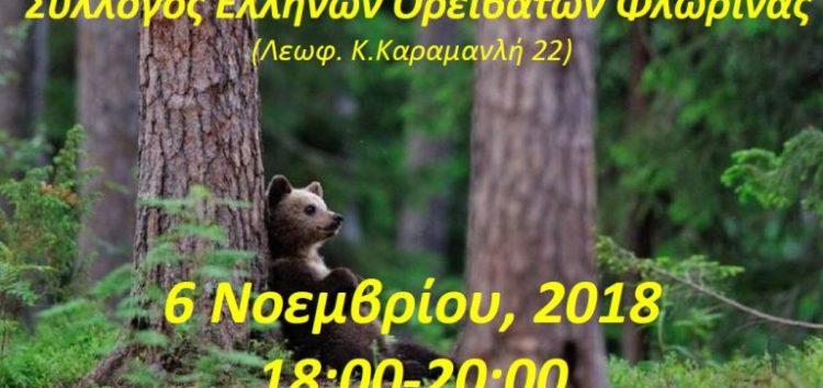 Συνάντηση για την καφέ αρκούδα στον ΣΕΟΦ