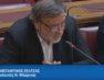 Εισήγηση του βουλευτή Κώστα Σέλτσα για τα νέα πανεπιστημιακά τμήματα της Φλώρινας (video)