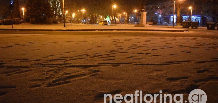Ξεκίνησε η χιονόπτωση στη Φλώρινα (pics)