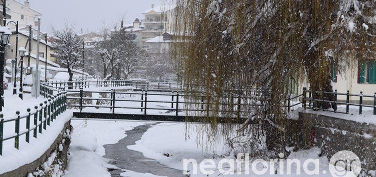 Συνθήκες ολικού παγετού στη Φλώρινα!
