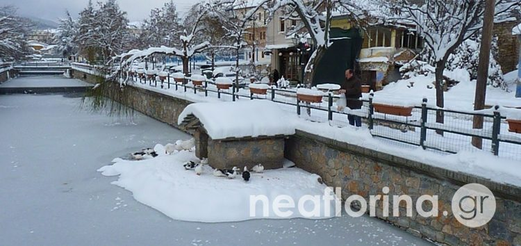 Η Φλώρινα μετά τη συνεχή χιονόπτωση – Πάγωσε μέχρι και ο ποταμός Σακουλέβας (pics)