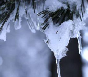 Συνθήκες παγετού στη Φλώρινα