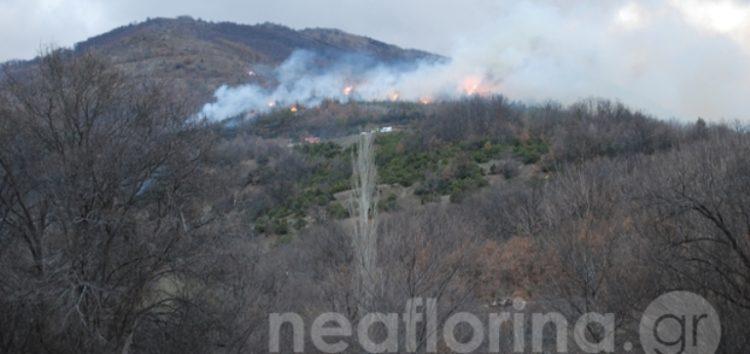 Υπό μερικό έλεγχο η πυρκαγιά έξω από την πόλη της Φλώρινας