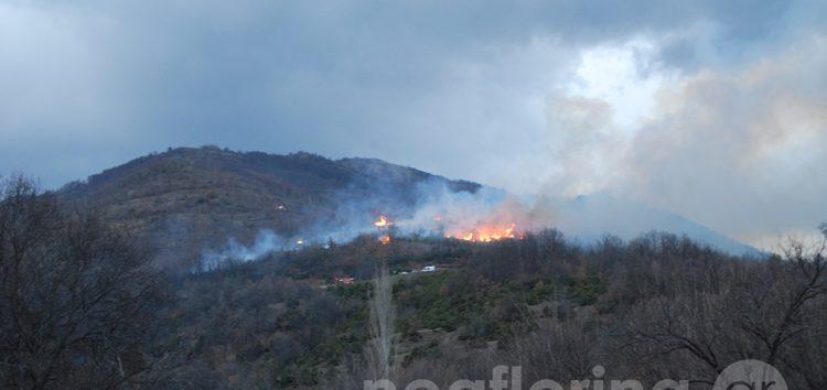 Σε εξέλιξη φωτιά έξω από τη Φλώρινα (video, pics)