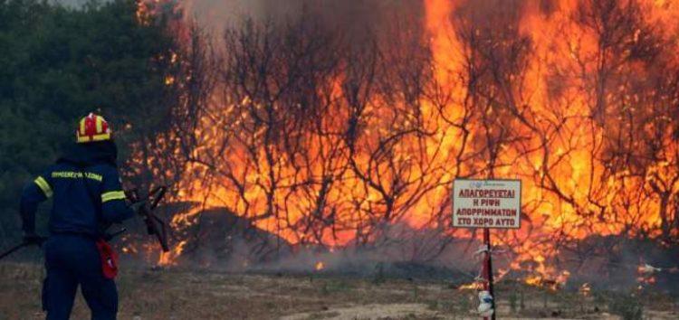 Ενημέρωση από την Πυροσβεστική Υπηρεσία Φλώρινας με αφορμή τις δασικές και αγροτικές πυρκαγιές που εκδηλώθηκαν στην περιοχή