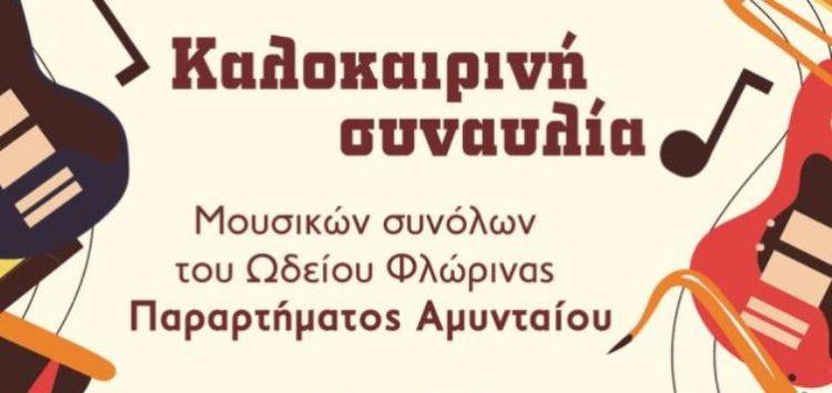 Καλοκαιρινή συναυλία μουσικών συνόλων του Ωδείου Φλώρινας παραρτήματος Αμυνταίου