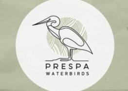 PrespaWings: Ανακαλύψτε τον κόσμο των πουλιών του υγροτόπου της Πρέσπας