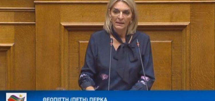 Ομιλία της Πέτης Πέρκας επί του νομοσχεδίου «Επενδύω στην Ελλάδα και άλλες διατάξεις» (video)
