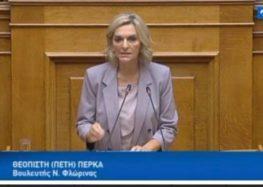 Εισήγηση της Πέτης Πέρκα στη Διαρκή Επιτροπή Παραγωγής & Εμπορίου (video)