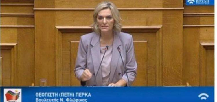 Ομιλία της Πέτης Πέρκα στο νομοσχέδιο «Φορολογική μεταρρύθμιση με αναπτυξιακή διάσταση για την Ελλάδα του αύριο» (video)