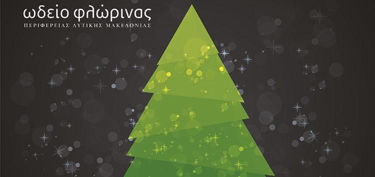 Χριστουγεννιάτικες συναυλίες με μουσικά σύνολα του Ωδείου
