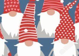 Χριστουγεννιάτικο παζάρι από το 5ο δημοτικό σχολείο Φλώρινας «Θ. Κάστανος»