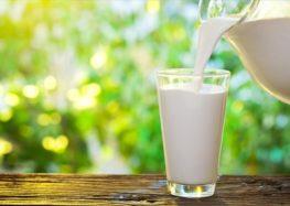 Είναι τελικά το γάλα «κακό» για τον ενήλικα άνθρωπο;