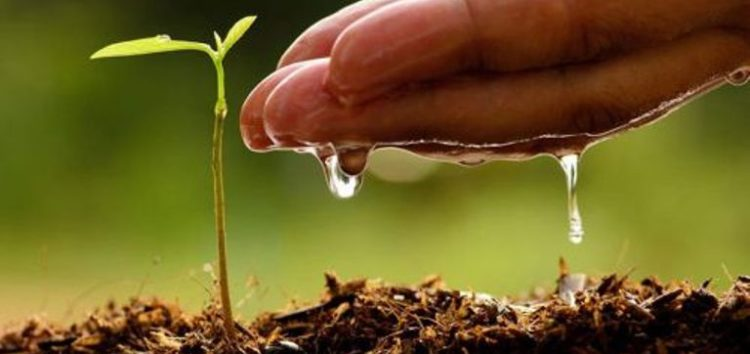 Ξεκινά το πρόγραμμα Αγροτικής Επιχειρηματικότητας στο Κέντρο Δια Βίου Μάθησης Πρεσπών