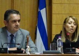 Η πρόεδρος του περιφερειακού συμβουλίου ζητά από τα μέλη του να συνεισφέρουν στην ενίσχυση των νοσοκομείων