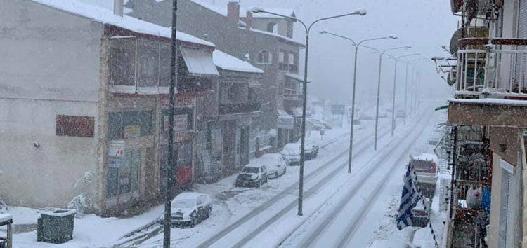 Συνεχίζεται η έντονη χιονόπτωση στη Φλώρινα – Ξεπερνά τα 20 εκατοστά το ύψος του χιονιού (pics)