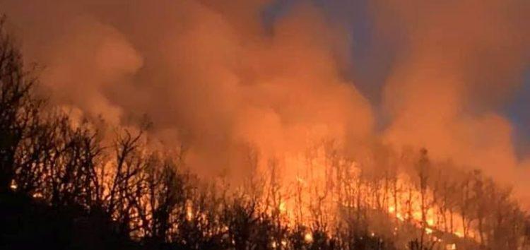 Καίγονται δασικές εκτάσεις στην κοινότητα Κώττα του δήμου Πρεσπών