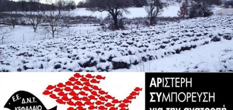Αριστερή Συμπόρευση για την Ανατροπή: Να αποζημιωθούν οι αγρότες από τις καταστροφές λόγω παγετού