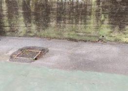 Καθαρισμός και συντήρηση των γηπέδων από τον Όμιλο Αντισφαίρισης Φλώρινας North Grip