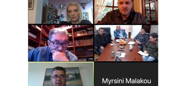 Τηλεδιάσκεψη της Βουλευτή και μελών του ΣΥΡΙΖΑ Φλώρινας με τον Δήμαρχο και τους φορείς της Πρέσπας